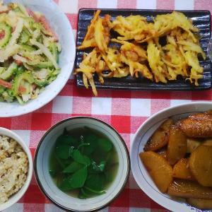 2色のゴーヤーと鶏手羽と大根の黄金煮と少しのかき揚げでお昼ご飯。