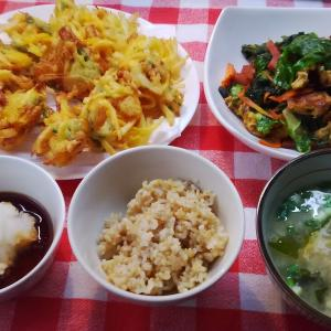 青パパイヤのかき揚げと青菜の麩炒めでお昼ご飯。
