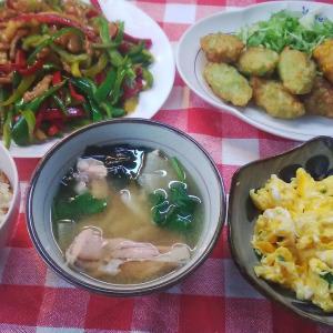 お昼ご飯・・鮭ご飯と青椒肉絲と2種の味の白身魚のつくね揚げ。