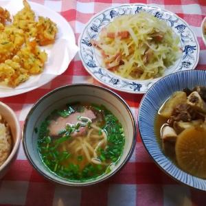 海老と玉葱のかき揚げと青パパイヤ炒めでお昼ご飯。