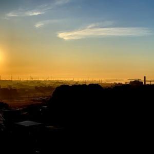 久々の朝陽