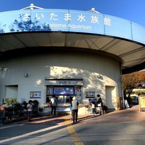 さいたま水族館:色付く上流編