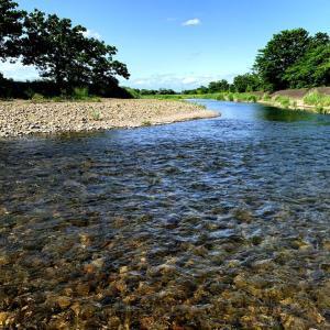 利根川の翌日に高麗川