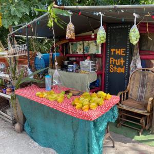 グアムで地元産のフルーツが食べれる場所!!! 時期の物ってやっぱりいいよね♪ フルーツスタンド