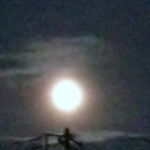 月だよーん