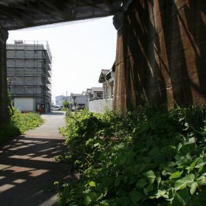 紀伊中ノ島駅周辺