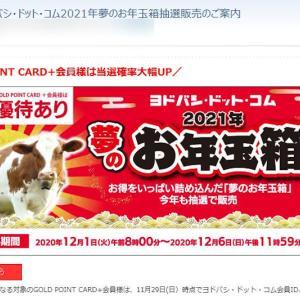 ヨドバシ.com 2021年夢のお年玉