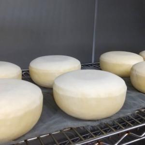 別海チーズのおみやげ乳清