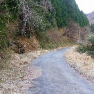 若狭・野坂鉱山 探訪