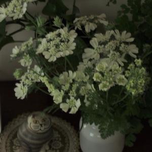 花があれば
