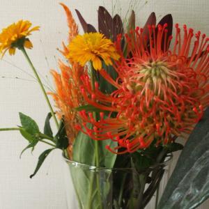 7月のお花は