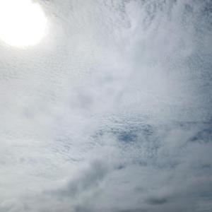 おはようございます今日は12:32に夏至です。昼が最も長い一日。週末二日間のレベ...