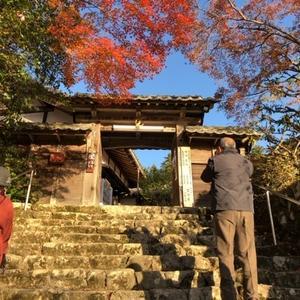 滋賀県へ紅葉狩り②