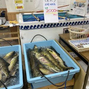 北東北ボッチ旅 17日目 十和田湖に向かって