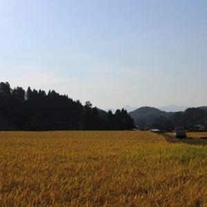 大ケ生ツアーに行ってきました。