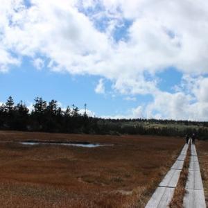 八幡平山に行ってきました。
