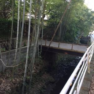 北鎌倉の小川