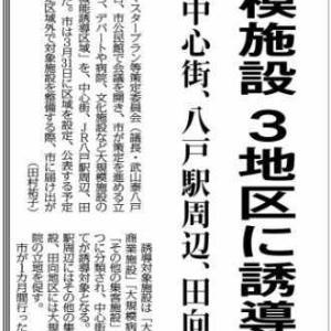 田向には保健所、八戸駅には集客施設、中心街には商業施設+病院+集客施設、だそうな