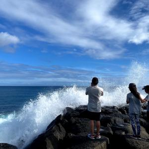 ハワイの日本海