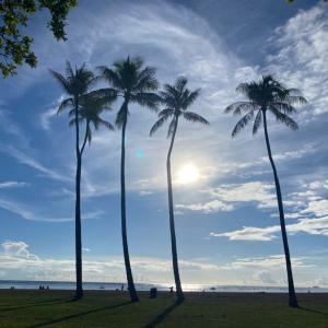 これってハワイの危機?
