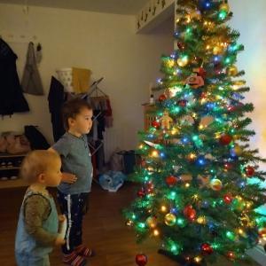 Aちゃんちのクリスマス・ツリー点灯♪