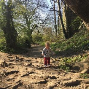 自然公園でウサギちゃんに遭遇!