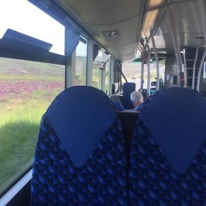 おとなの遠足・田舎のバスでGO!