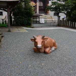阿蘇神社と周辺の温泉