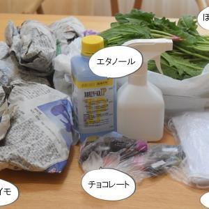 【実家に物資支援】「笠地蔵」方式で玄関前に荷物を置く!
