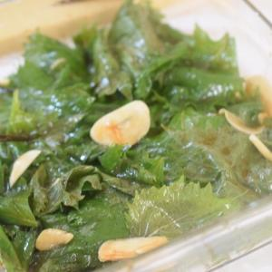 【庭の大葉で】青シソの醤油&ごま油&ニンニク漬け【美味しくないわけがない!】