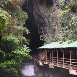 【山口旅行2】秋芳洞~秋吉台~湯田温泉に泊まる♪