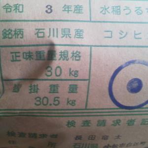 今年も全量一等米でした
