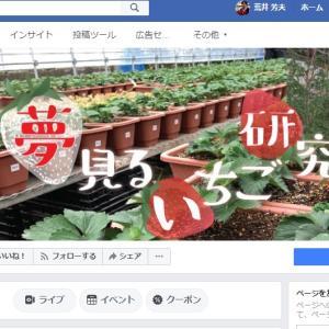 """夢見るいちご研究所 """"12月オープン""""予定!!"""
