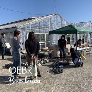 """昨日も """"井上まゆ美先生のハンギング教室開催"""""""