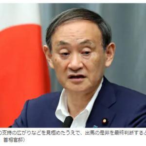 菅総裁が誕生しそうな勢い