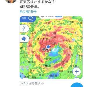 台風15号後はツイッターの人になっていました。