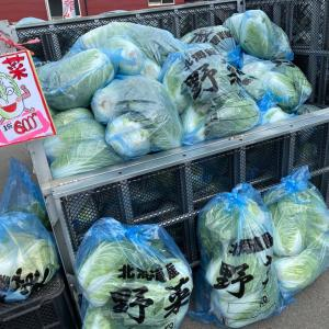 『松浦農園祭最終日始まっています‼️』