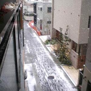 ●四月まじかの雪にビックリ