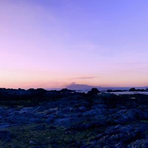 太古の海岸