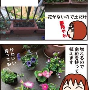 花はいやし