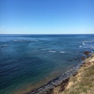 太平洋を眺めながら断崖高台ハイキング・コース