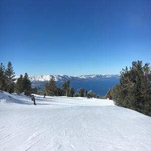 レイクタホでスキー! しかしワンコの雪遊びは!?