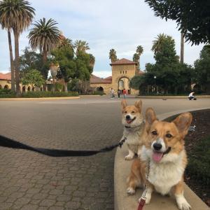 広大な大学のキャンパスで散歩♪
