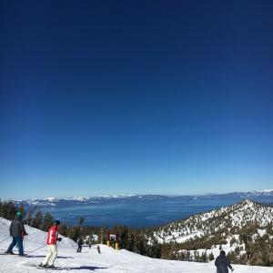 ワンコの雪遊び&最高のスキー日和