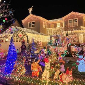 美しいクリスマス・デコレーションの街をワンコと散歩