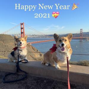 Happy New Year 2021 ♪