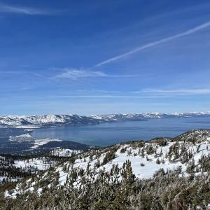気分爽快!レイクタホでスキー&ワンコの雪遊び
