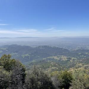 きれいなカリフォルニア・ポピーが咲く州立公園を散歩