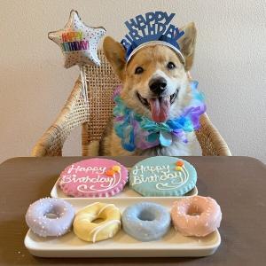 HAPPY 15TH BIRTHDAY ♪ クリンシ15歳になりました !