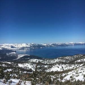 さらに積雪♪ワンコも楽しむ最高のスキー日和
